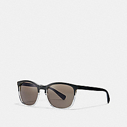 BRANT SUNGLASSES - OLIVE CRYSTAL/OLIVE - COACH L1607