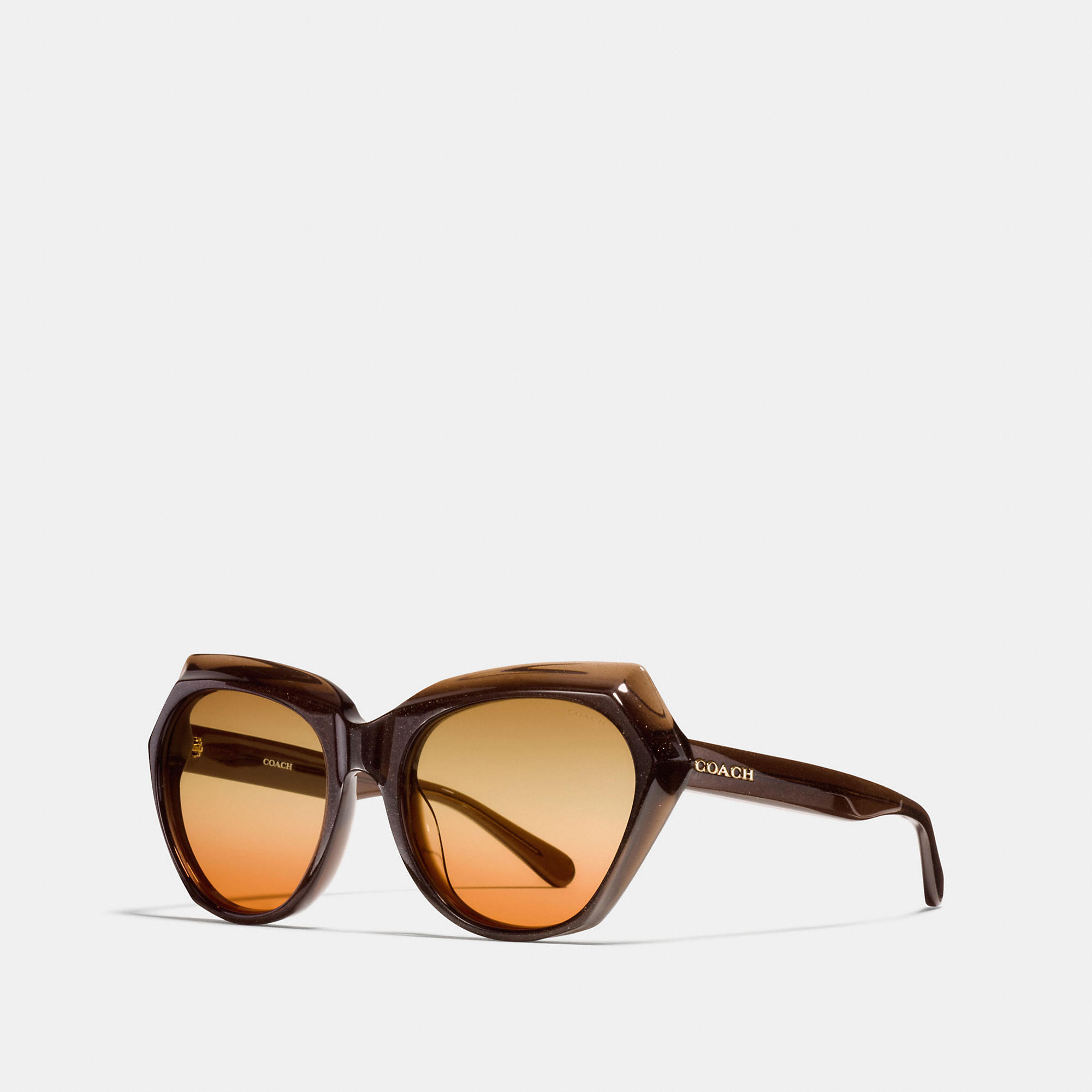 Coach Oasis Cat Eye Sunglasses