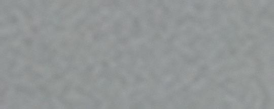 ANT SLVR BLUHRN/FLASH