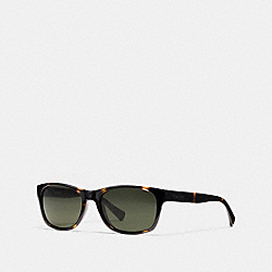 COACH ESSEX SUNGLASSES - DARK TORTOISE - L808