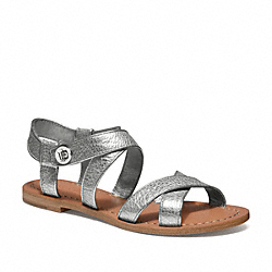 BILLIE - q1748 - WARM PEWTER
