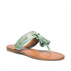 COACH SHEENA - MINT - Q1785