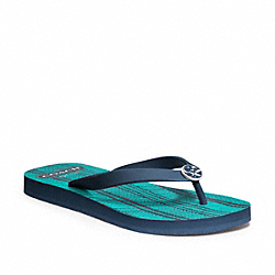 ALESSA - NAVY/TURQUOISE NAVY - COACH Q1890