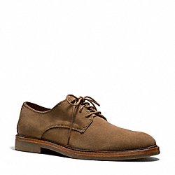 GILBERT OXFORD - SNUFF - COACH Q4093
