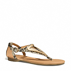 COACH Q6083 - CHAILEY SANDAL NATURAL
