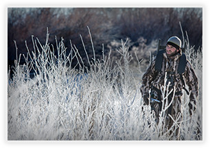 A man hunting in the brush.