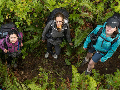 Aerial image of three women in Columbia gear standing in a forest.