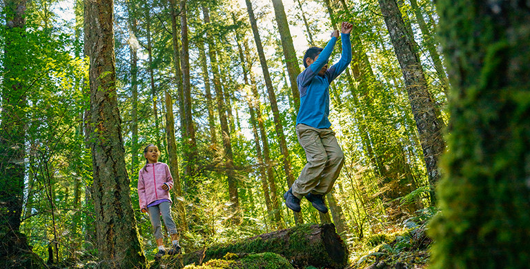 Children hiking in the woods.