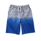 Ombre Stripe Shorts
