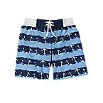 Anchor Stripe Swim Trunks