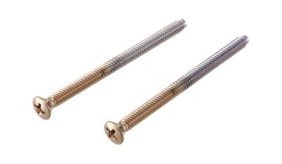Delta Escutcheon Trim Screws (2)