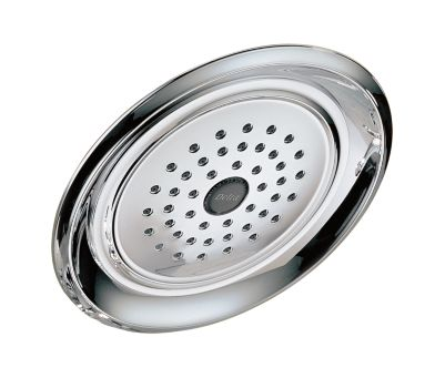 Leland Single-Setting Shower Head