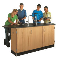 Four Student Workstation with Sink, L70040