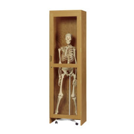 Science Classroom Mobile Skeleton Storage Cabinet, L70066