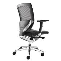 Arris Leather Mesh Chair, C80267
