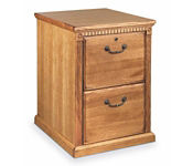 Oak 2 Drawer Vertical File, D30123