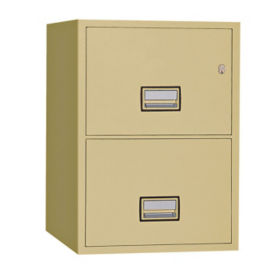 "Two Drawer Fire Resistant Vertical File - 31"" D, L40770"