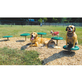 BarkPark Stepping Paws Exercise Set, F10407