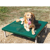 BarkPark Paws Grooming Table, F10408
