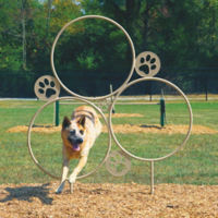 BarkPark Large Hoop Jump Dog Park Trainer, F10412