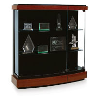 Contemporary Styled Wall-Mount Display Case, B32124