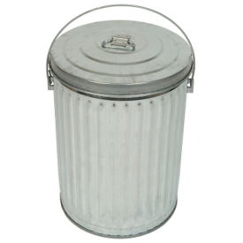 10-Gallon Galvanized Pail with Lid, F10175