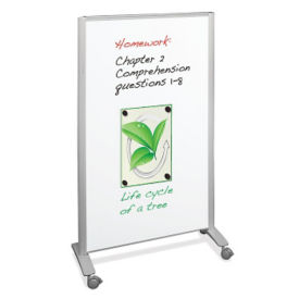 Mobile Double-Sided Whiteboard, B21121