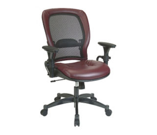 Ergonomic Chair with Matrex Back, C80094