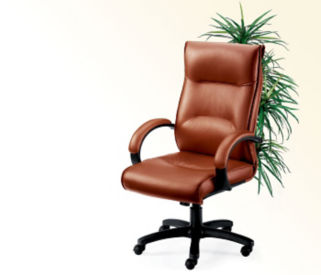 High-Back Leather Chair, C80090