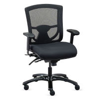 Fabric 24/7 Mesh Back Ergonomic Computer Chair , C80414