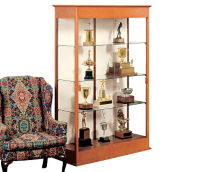 Display Case with Mirror Back, B32115
