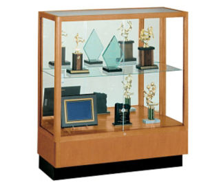 Counter Height Display Case with Mirror Backing, B32119