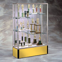 "48"" Wide Spirit Display Case with Mirror Back, B32164"