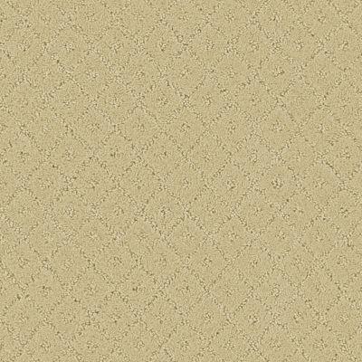 Shimmering Sands