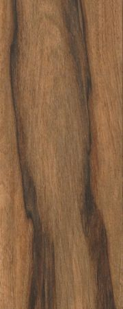 L4005 Seacoast Brown