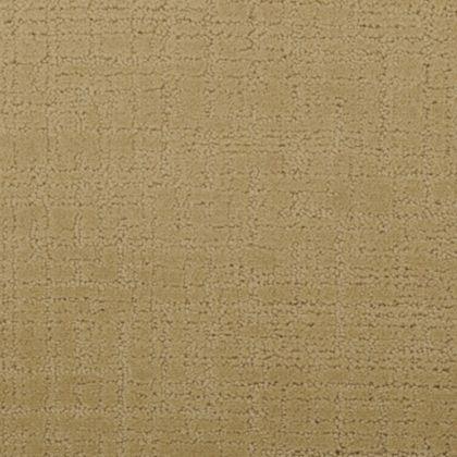 Stainmaster Nepali Np18 Caramel Carpet