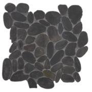FP102 Black Pearl Flat