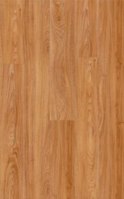 5100 Cottonwood Oak