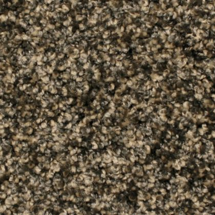 Stainmaster Crossroads 1027 Chocolate Tweed