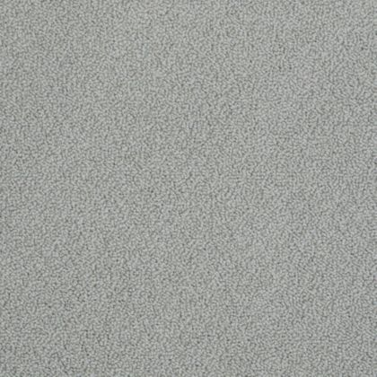 Stainmaster On Point 00552 Hazy Gray Carpet