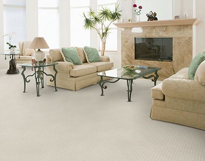 Stainmaster Holly Grove 10114 Linen