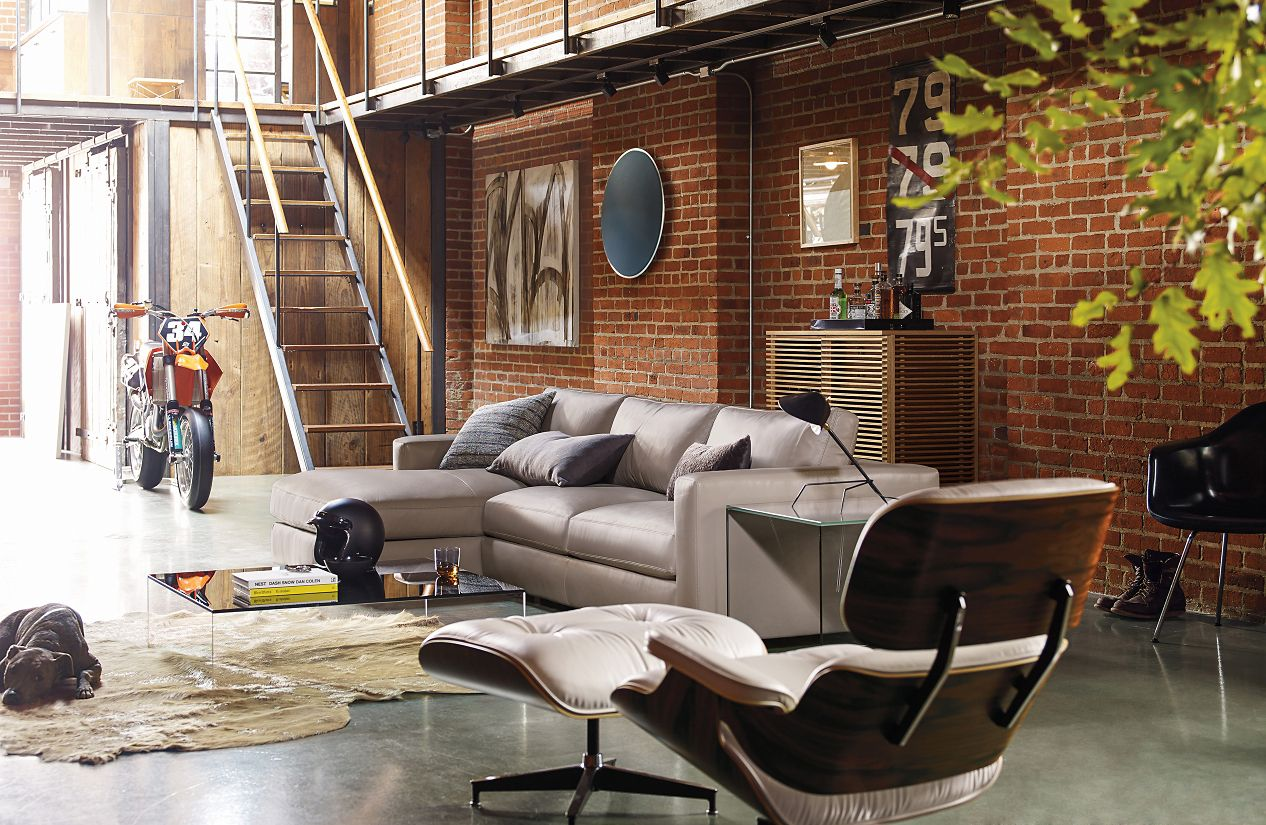 Eames lounge chair living room -  Eames Lounge Chair
