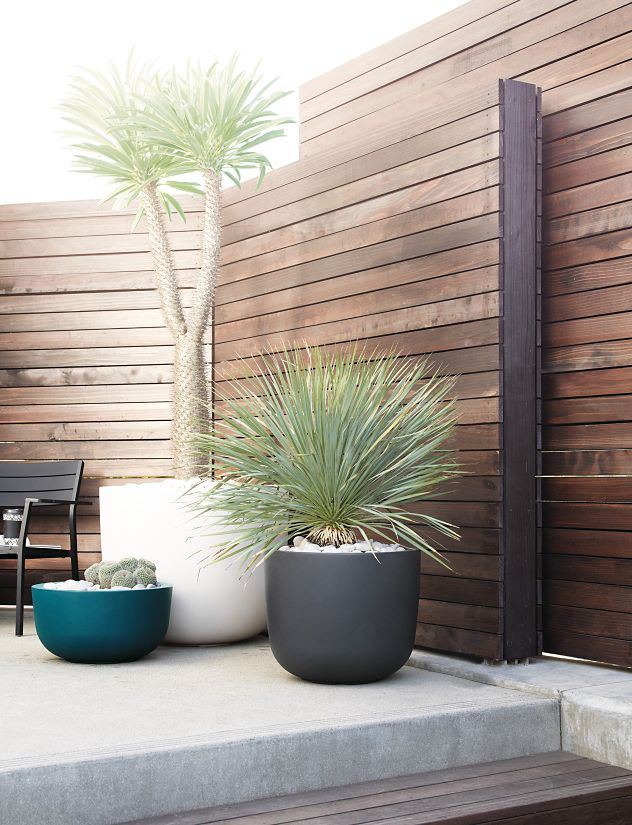 Cup Planter, Large - Herman Miller on black planters, green planters, extra large planters, custom planters, mini planters,