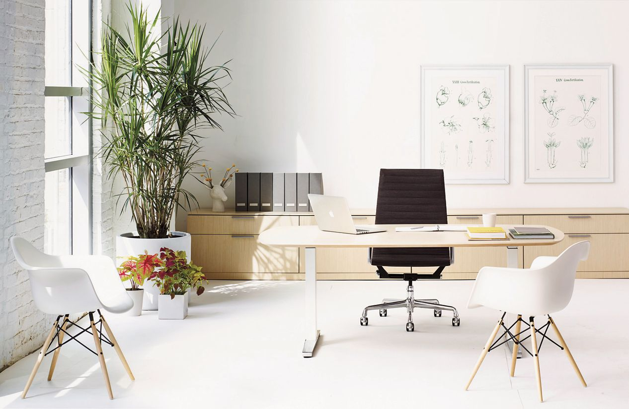 renew executive sit to stand desk with advanced cord management - Sit Stand Desk