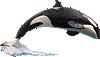 SeaWorld Orca & Crew Wall Decal