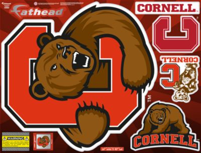 Cornell Big Red Street Grip Outdoor Decal