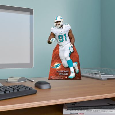 Cameron Wake Desktop Stand Out