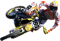 Travis Pastrana Action Wall Decal