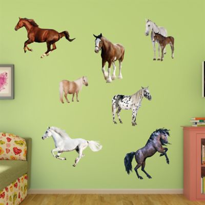 Horse Collection