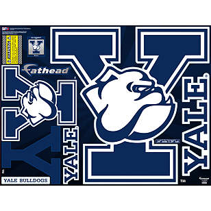 Yale Bulldogs Street Grip